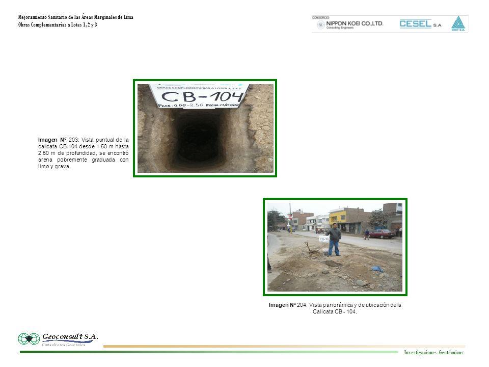 Mejoramiento Sanitario de las Áreas Marginales de Lima Obras Complementarias a Lotes 1, 2 y 3 Investigaciones Geotécnicas Imagen N° 204: Vista panorám