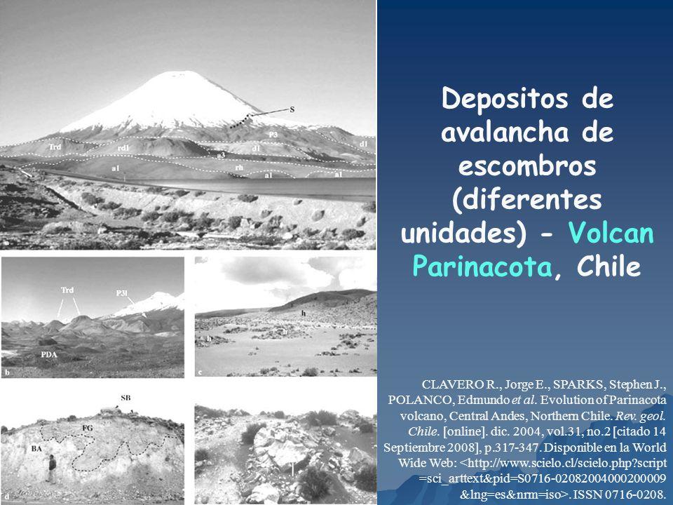 Depositos de avalancha de escombros (diferentes unidades) - Volcan Parinacota, Chile CLAVERO R., Jorge E., SPARKS, Stephen J., POLANCO, Edmundo et al.