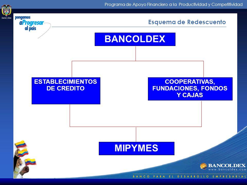 Programa de Apoyo Financiero a la Productividad y Competitividad