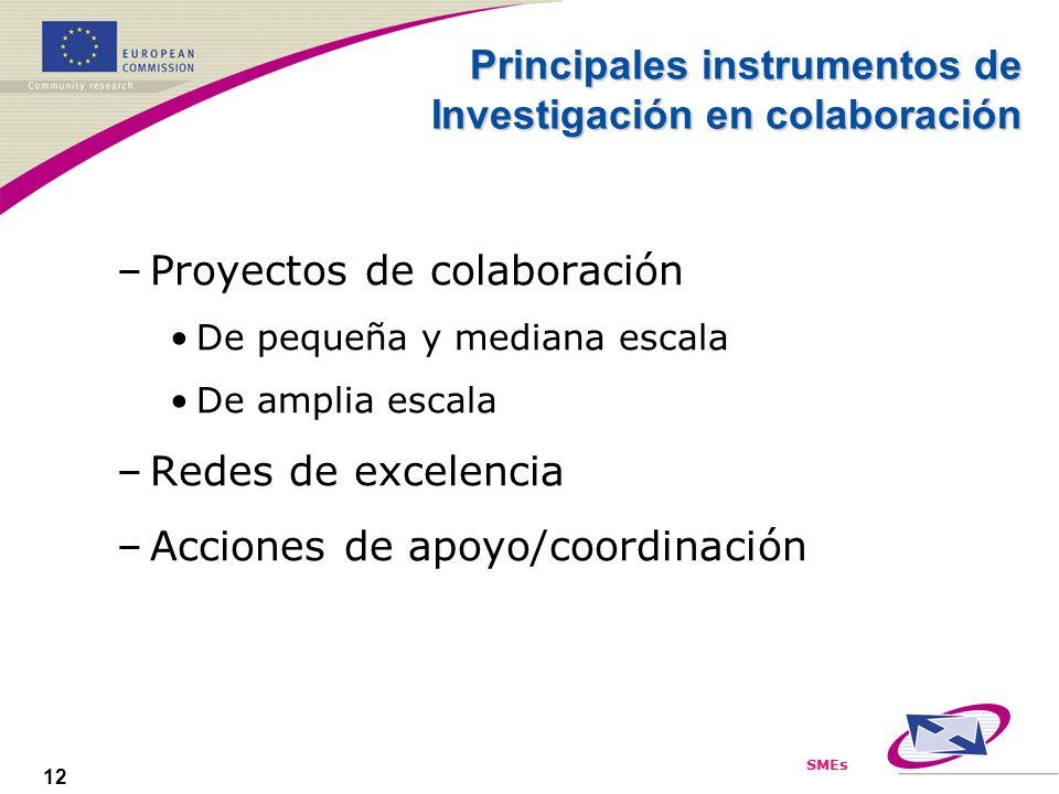 SMEs 12 Principales instrumentos de Investigación en colaboración –Proyectos de colaboración De pequeña y mediana escala De amplia escala –Redes de excelencia –Acciones de apoyo/coordinación