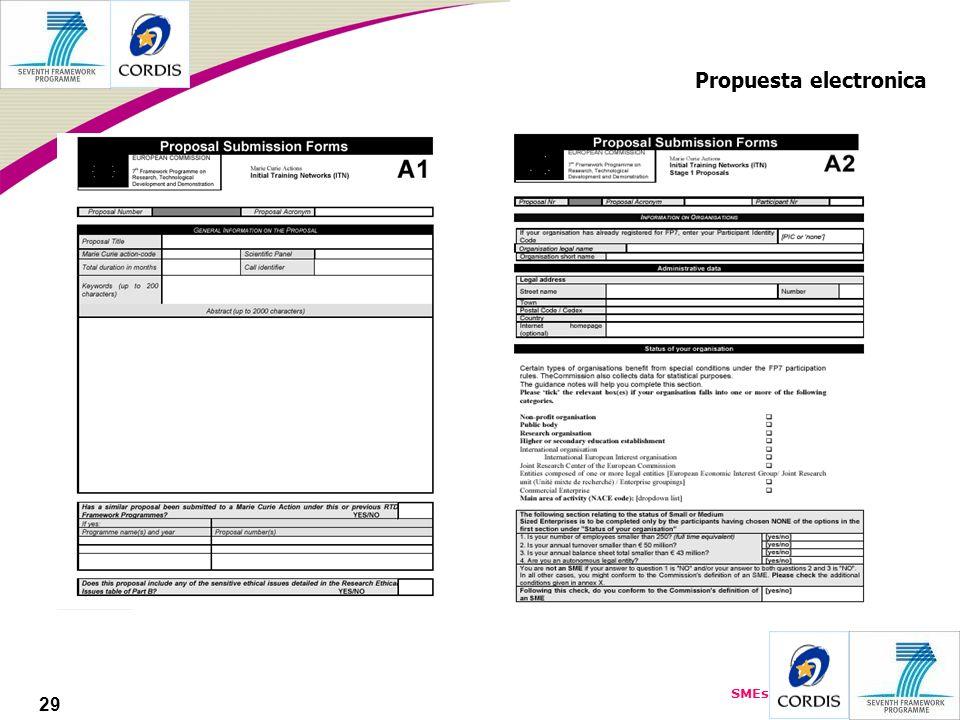 SMEs 29 Propuesta electronica