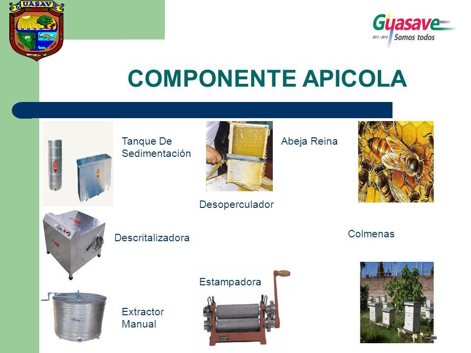 COMPONENTE APICOLA Tanque De Sedimentación Descritalizadora Extractor Manual Desoperculador Estampadora Abeja Reina Colmenas