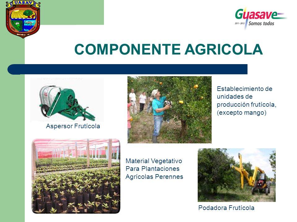 COMPONENTE AGRICOLA Podadora Frutícola Aspersor Frutícola Material Vegetativo Para Plantaciones Agrícolas Perennes Establecimiento de unidades de prod