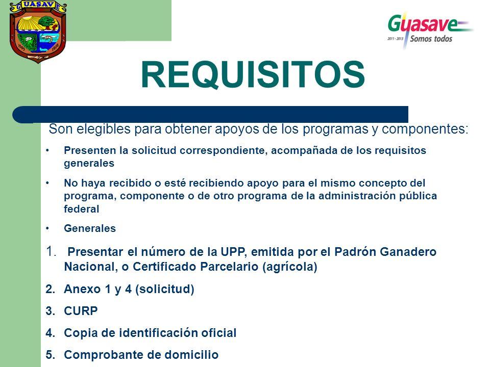REQUISITOS Son elegibles para obtener apoyos de los programas y componentes: Presenten la solicitud correspondiente, acompañada de los requisitos gene