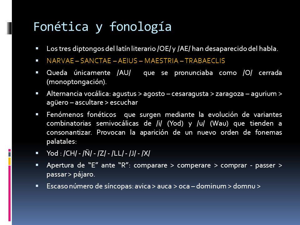 Fonética y fonología Los tres diptongos del latín literario /OE/ y /AE/ han desaparecido del habla. NARVAE – SANCTAE – AEIUS – MAESTRIA – TRABAECLIS Q