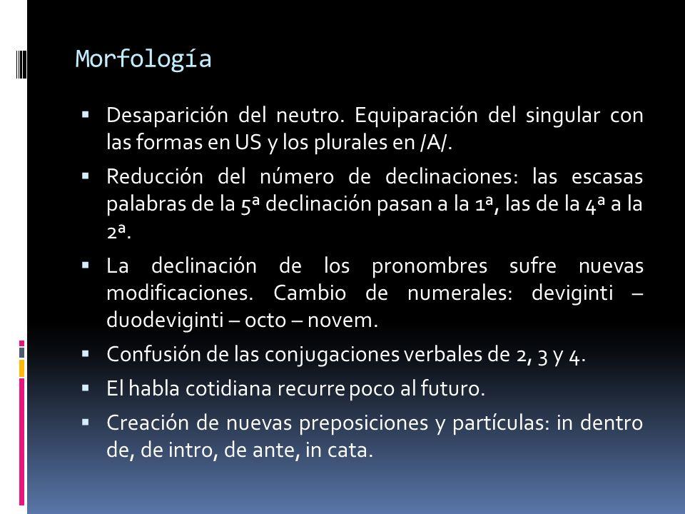 Morfología Desaparición del neutro. Equiparación del singular con las formas en US y los plurales en /A/. Reducción del número de declinaciones: las e
