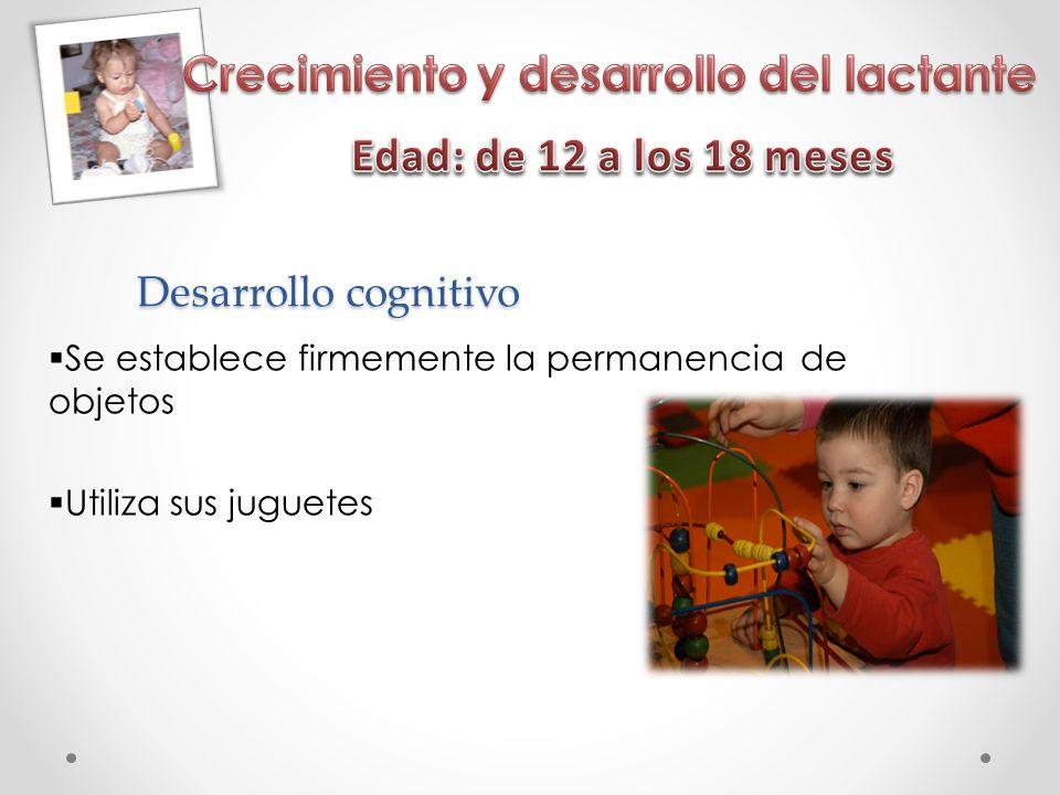 Desarrollo cognitivo Se establece firmemente la permanencia de objetos Utiliza sus juguetes