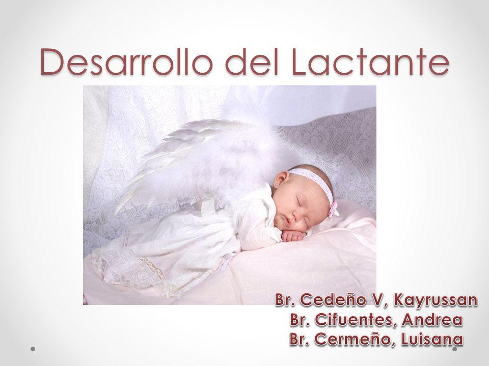 Desarrollo del Lactante