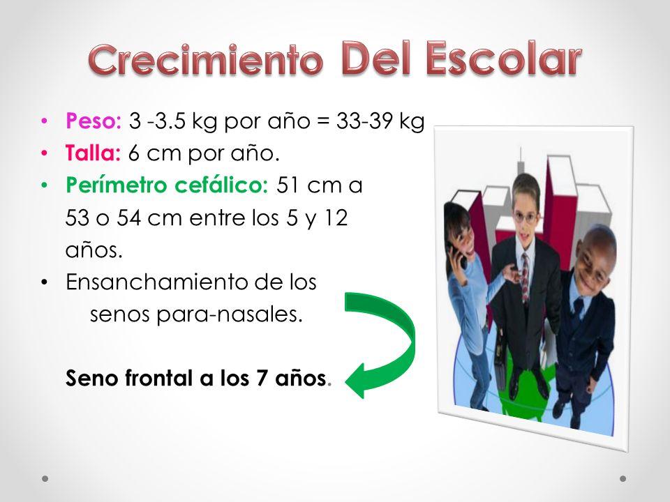 Peso: 3 -3.5 kg por año = 33-39 kg Talla: 6 cm por año. Perímetro cefálico: 51 cm a 53 o 54 cm entre los 5 y 12 años. Ensanchamiento de los senos para