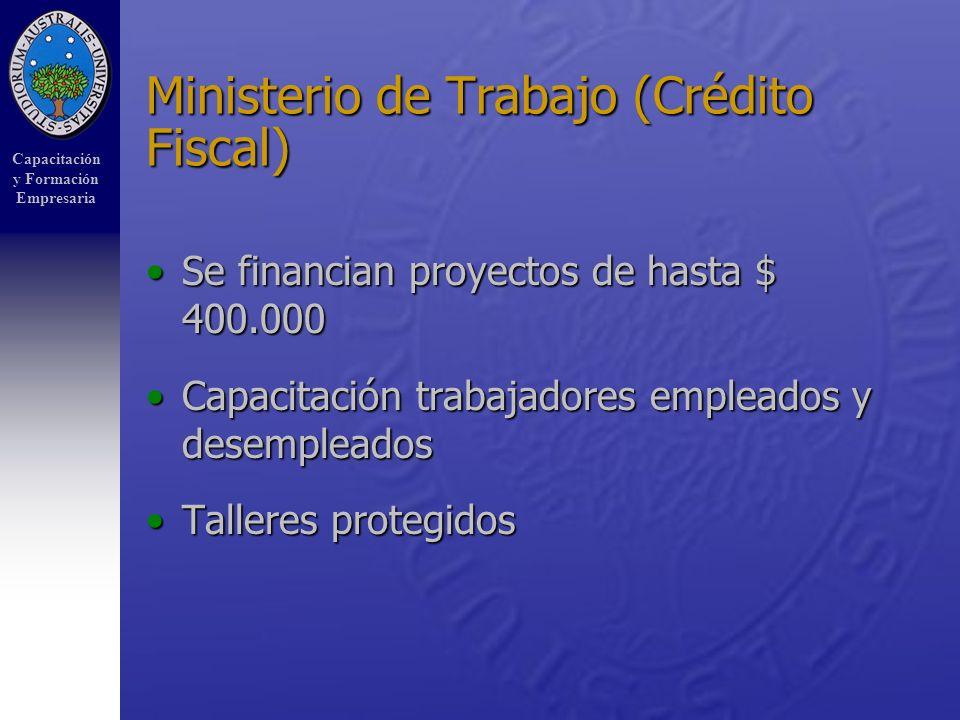 Capacitación y Formación Empresaria Ministerio de Trabajo (Crédito Fiscal) Se financian proyectos de hasta $ 400.000Se financian proyectos de hasta $ 400.000 Capacitación trabajadores empleados y desempleadosCapacitación trabajadores empleados y desempleados Talleres protegidosTalleres protegidos