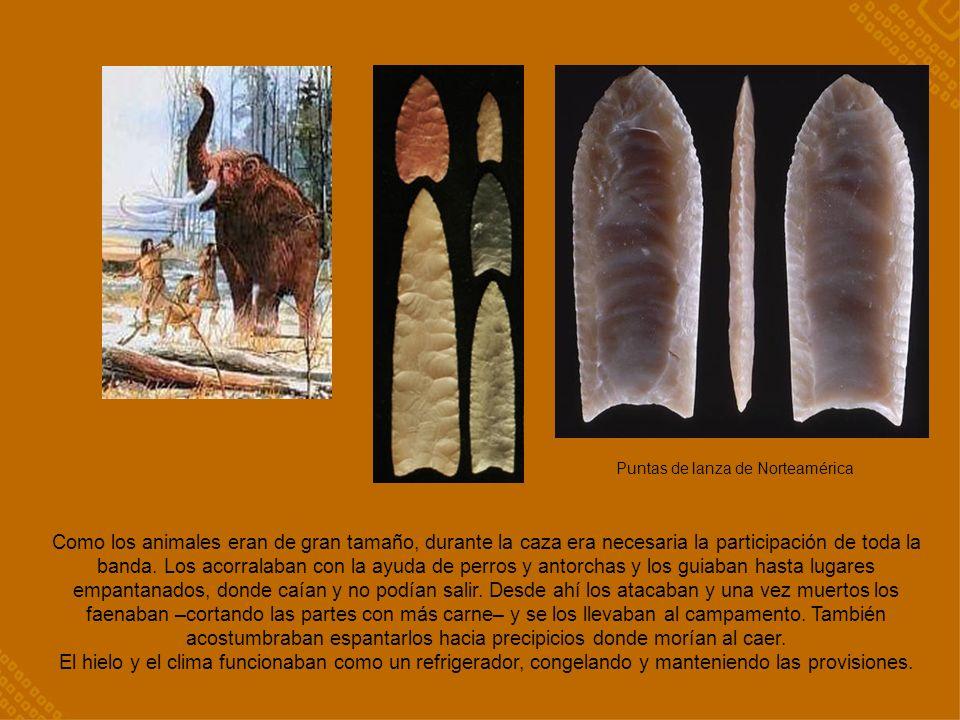 Como los animales eran de gran tamaño, durante la caza era necesaria la participación de toda la banda.