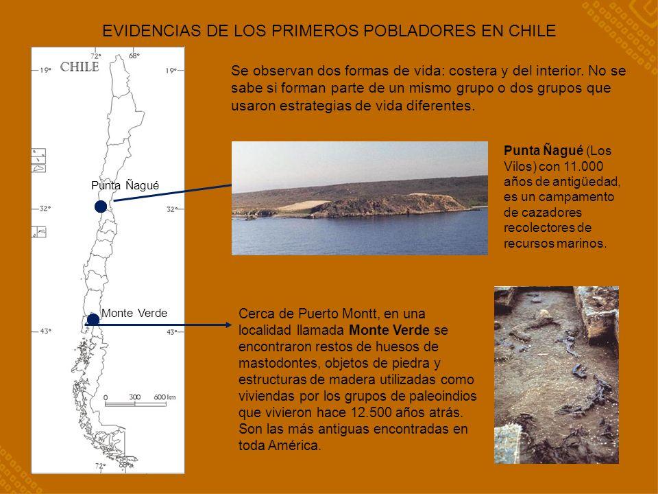 EVIDENCIAS DE LOS PRIMEROS POBLADORES EN CHILE Cerca de Puerto Montt, en una localidad llamada Monte Verde se encontraron restos de huesos de mastodontes, objetos de piedra y estructuras de madera utilizadas como viviendas por los grupos de paleoindios que vivieron hace 12.500 años atrás.