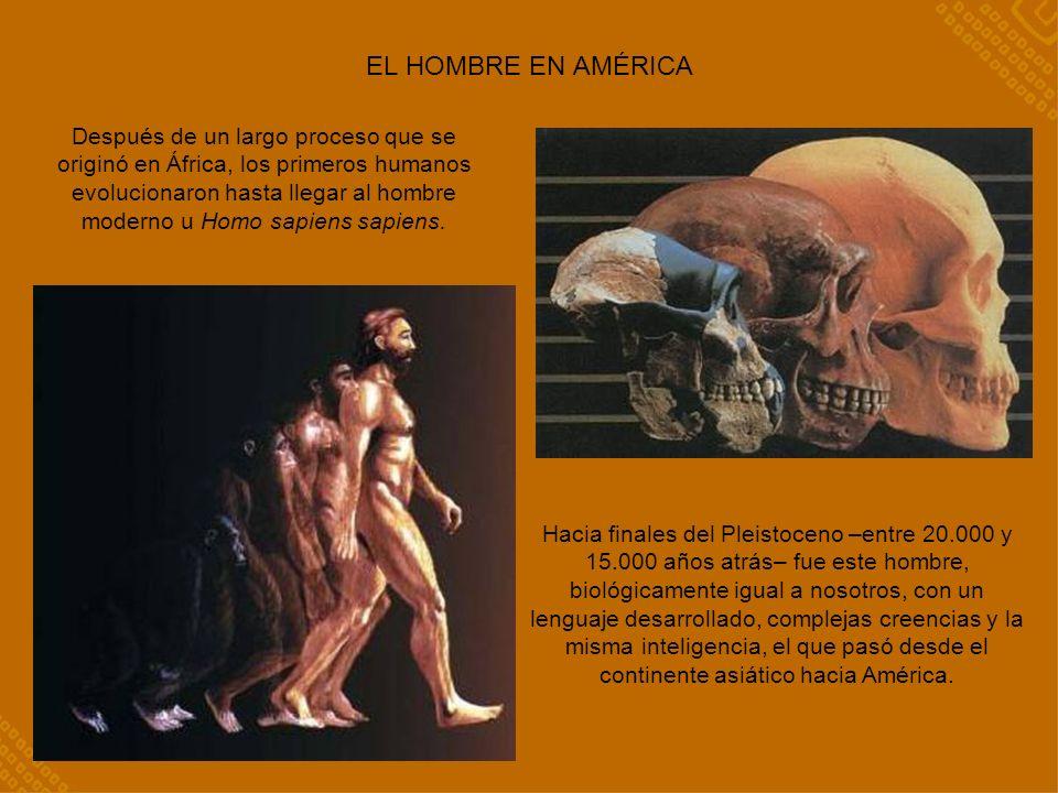 EL HOMBRE EN AMÉRICA Hacia finales del Pleistoceno –entre 20.000 y 15.000 años atrás– fue este hombre, biológicamente igual a nosotros, con un lenguaje desarrollado, complejas creencias y la misma inteligencia, el que pasó desde el continente asiático hacia América.