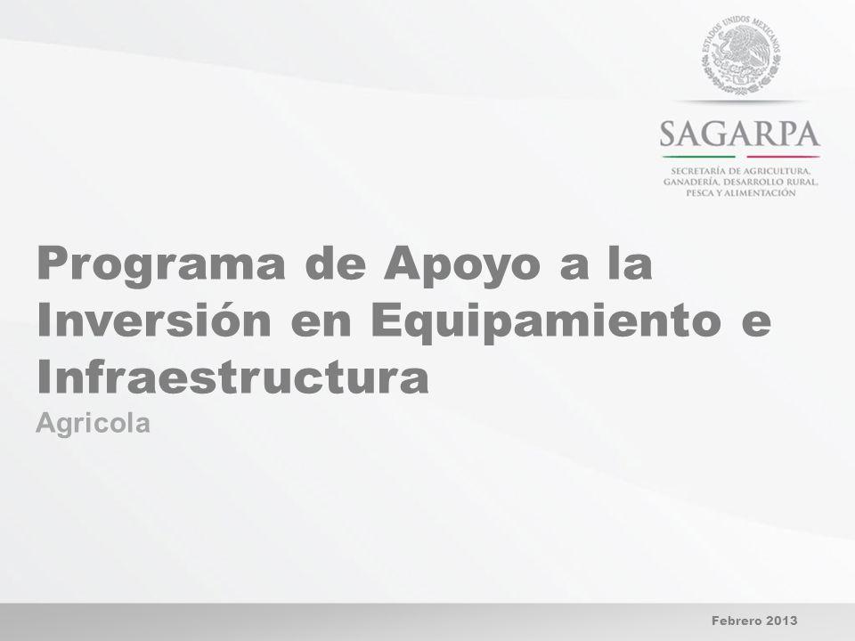 Programa de Apoyo a la Inversión en Equipamiento e Infraestructura Agricola Febrero 2013