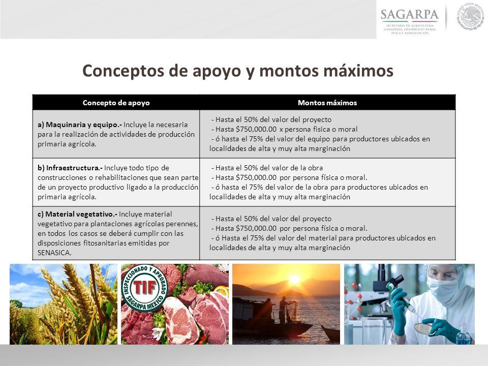 Concepto de apoyoMontos máximos a) Maquinaria y equipo.- Incluye la necesaria para la realización de actividades de producción primaria agrícola. - Ha