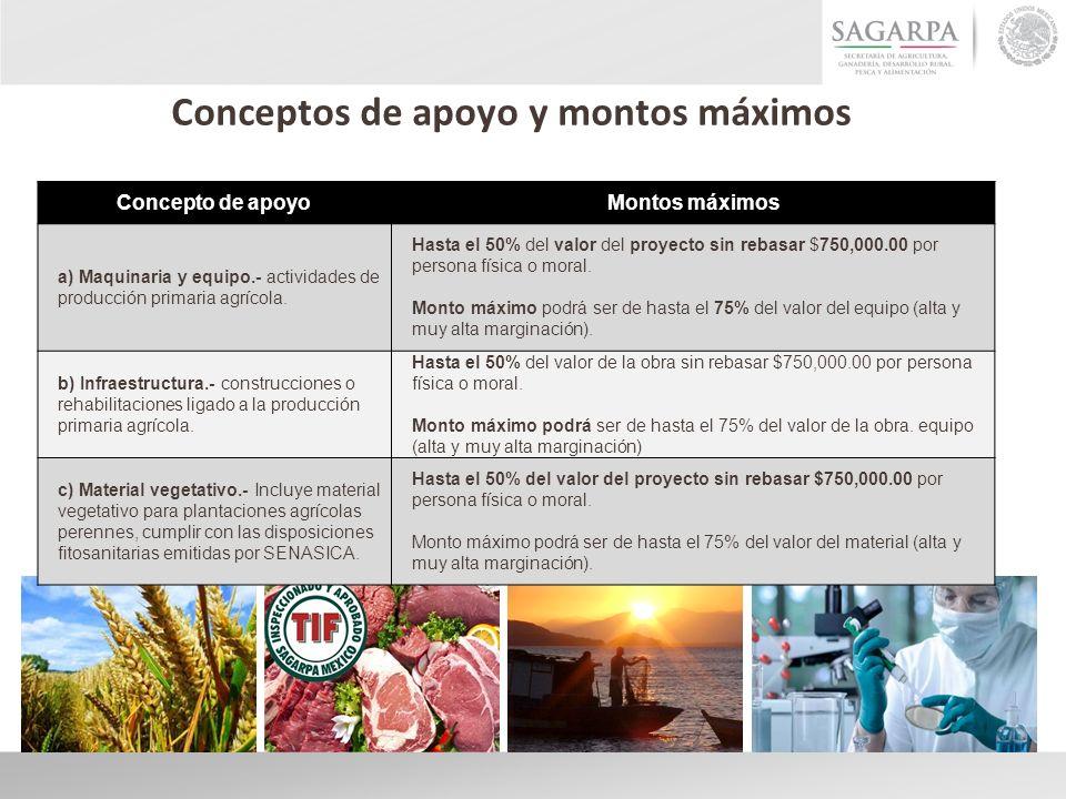 Concepto de apoyoMontos máximos a) Maquinaria y equipo.- actividades de producción primaria agrícola. Hasta el 50% del valor del proyecto sin rebasar