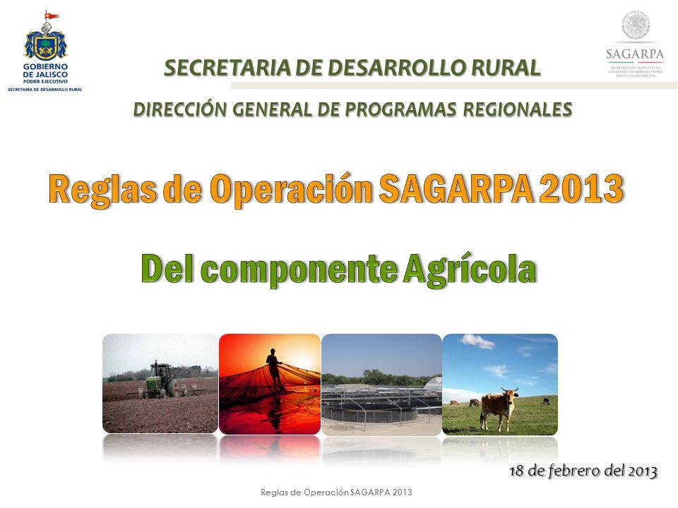 Reglas de Operación SAGARPA 2013 INCLUSIONINCLUSION Además en las reglas de operación 2013 se incluye en el articulo 9 el punto IV que a la letra dice: Fechas de apertura y cierre de ventanillas.
