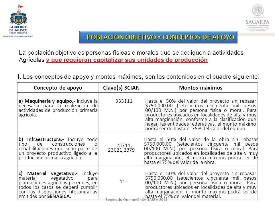 Reglas de Operación SAGARPA 2013 POBLACION OBJETIVO Y CONCEPTOS DE APOYO La población objetivo es personas físicas o morales que se dediquen a actividades Agrícolas y que requieran capitalizar sus unidades de producción I.