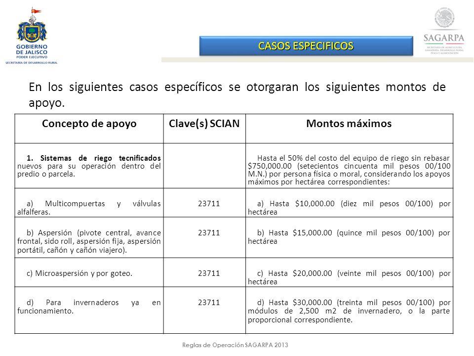 Reglas de Operación SAGARPA 2013 CASOS ESPECIFICOS Concepto de apoyoClave(s) SCIAN Montos máximos 2.