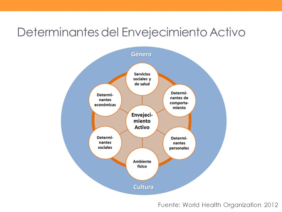 Determinantes del Envejecimiento Activo Fuente: World Health Organization 2012