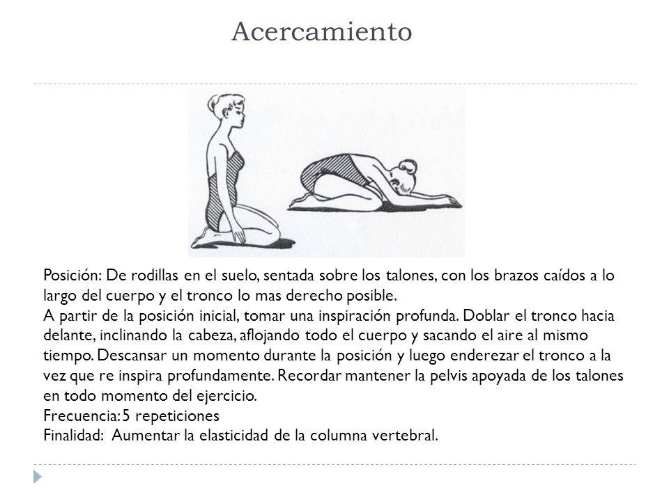 Acercamiento Posición: De rodillas en el suelo, sentada sobre los talones, con los brazos caídos a lo largo del cuerpo y el tronco lo mas derecho posi