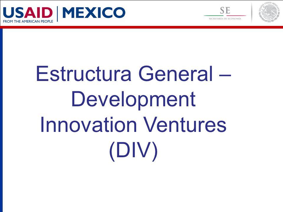 Estructura General – Development Innovation Ventures (DIV)