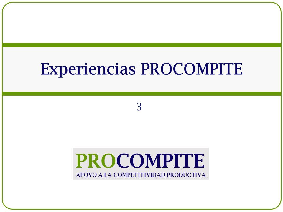 3 PROCOMPITE APOYO A LA COMPETITIVIDAD PRODUCTIVA