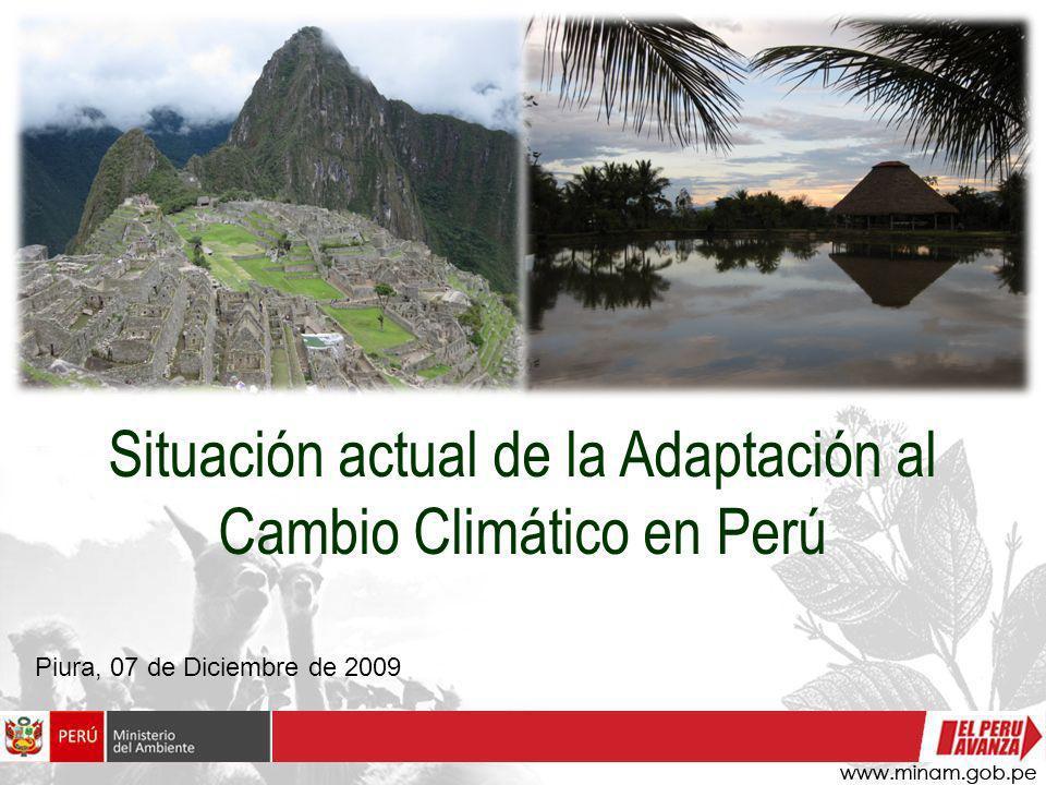 Situación actual de la Adaptación al Cambio Climático en Perú Piura, 07 de Diciembre de 2009