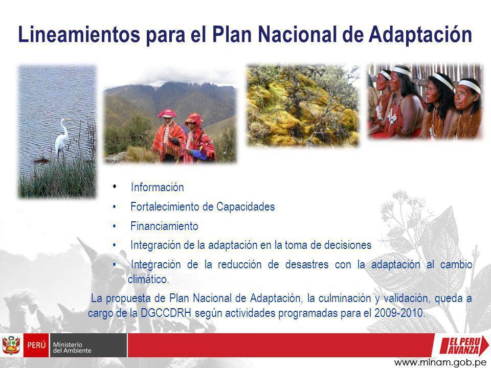 Lineamientos para el Plan Nacional de Adaptación Información Fortalecimiento de Capacidades Financiamiento Integración de la adaptación en la toma de