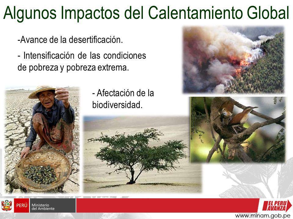 -Avance de la desertificación. - Intensificación de las condiciones de pobreza y pobreza extrema. Algunos Impactos del Calentamiento Global - Afectaci
