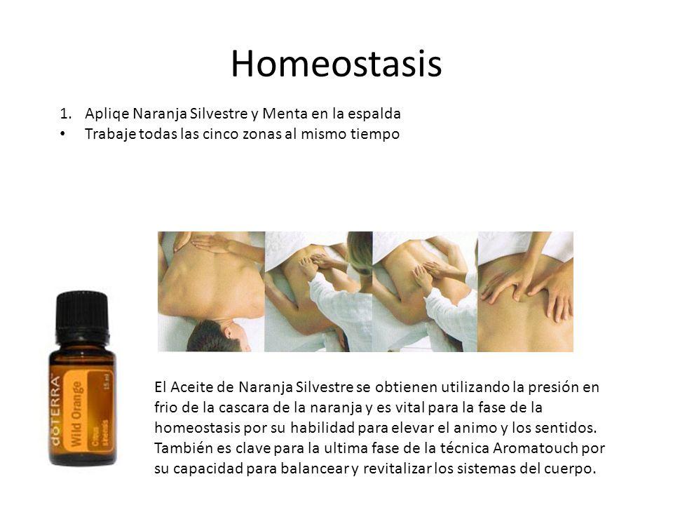 Homeostasis El Aceite de Naranja Silvestre se obtienen utilizando la presión en frio de la cascara de la naranja y es vital para la fase de la homeost