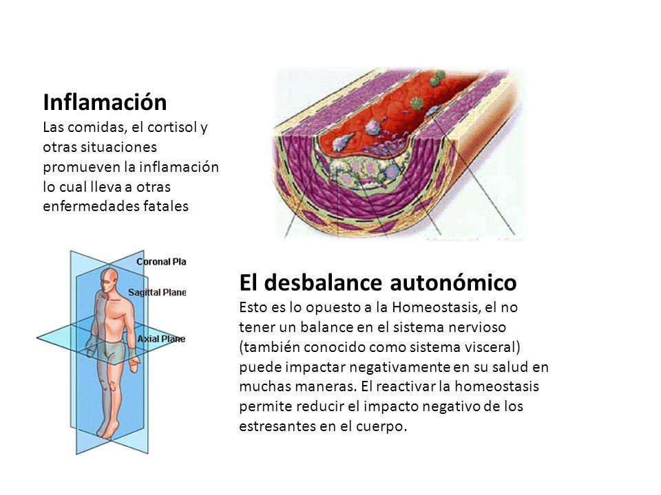 Inflamación Las comidas, el cortisol y otras situaciones promueven la inflamación lo cual lleva a otras enfermedades fatales El desbalance autonómico