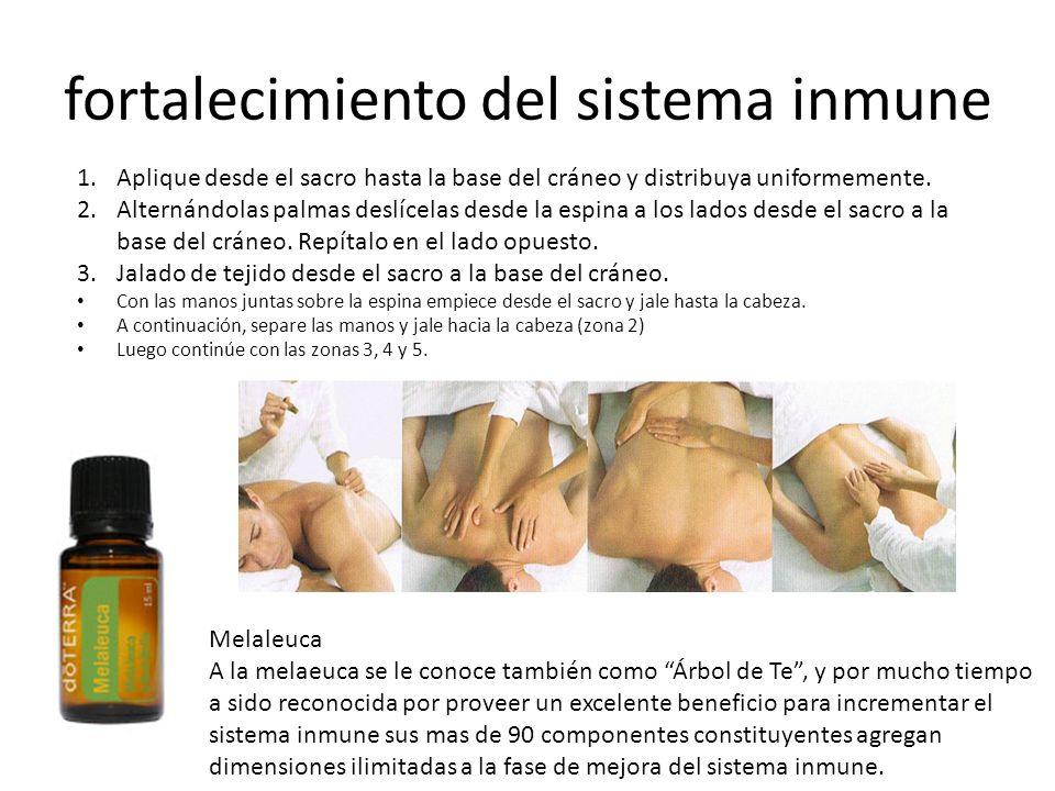 fortalecimiento del sistema inmune Melaleuca A la melaeuca se le conoce también como Árbol de Te, y por mucho tiempo a sido reconocida por proveer un