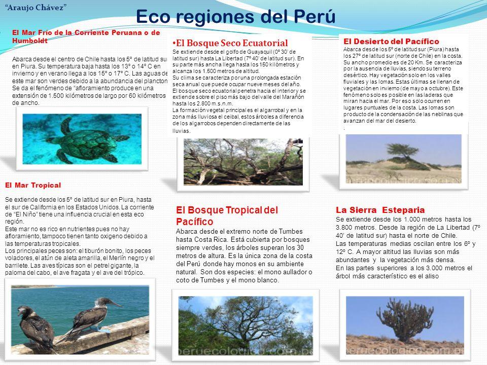 Eco regiones del Perú El Mar Frío de la Corriente Peruana o de Humboldt Abarca desde el centro de Chile hasta los 5º de latitud sur en Piura.