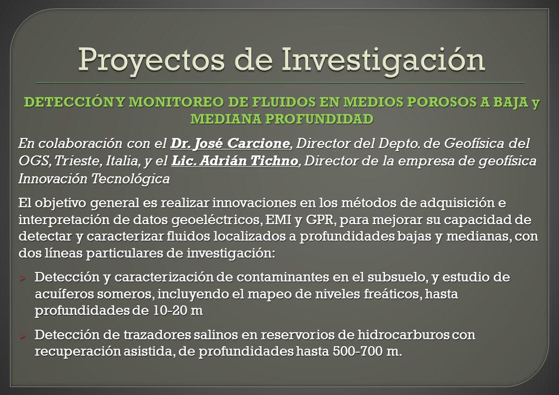 DETECCIÓN Y MONITOREO DE FLUIDOS EN MEDIOS POROSOS A BAJA y MEDIANA PROFUNDIDAD En colaboración con el Dr. José Carcione, Director del Depto. de Geofí