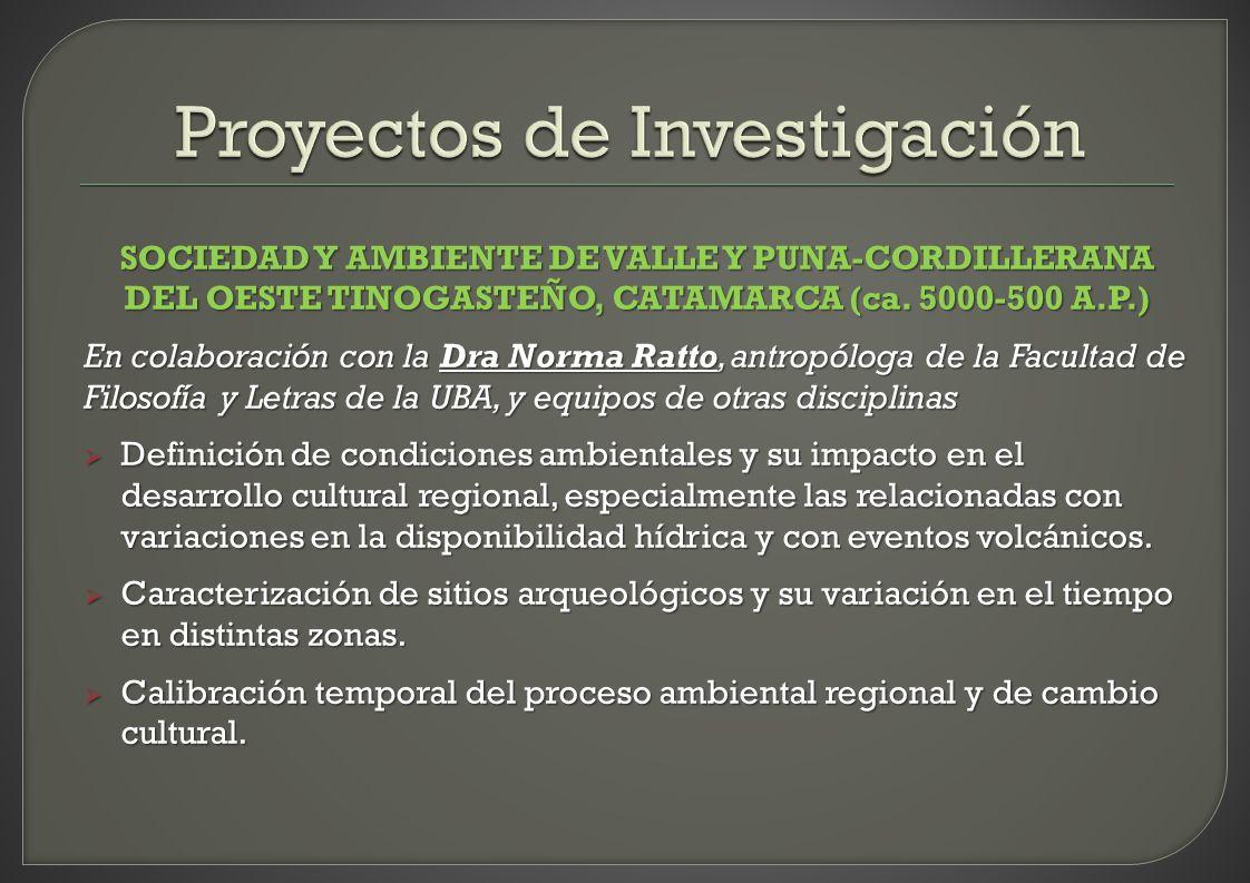 SOCIEDAD Y AMBIENTE DE VALLE Y PUNA-CORDILLERANA DEL OESTE TINOGASTEÑO, CATAMARCA (ca. 5000-500 A.P.) En colaboración con la Dra Norma Ratto, antropól