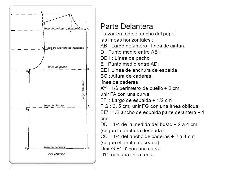 Parte Delantera Trazar en todo el ancho del papel las líneas horizontales : AB : Largo delantero ; línea de cintura D : Punto medio entre AB ; DD1 : L