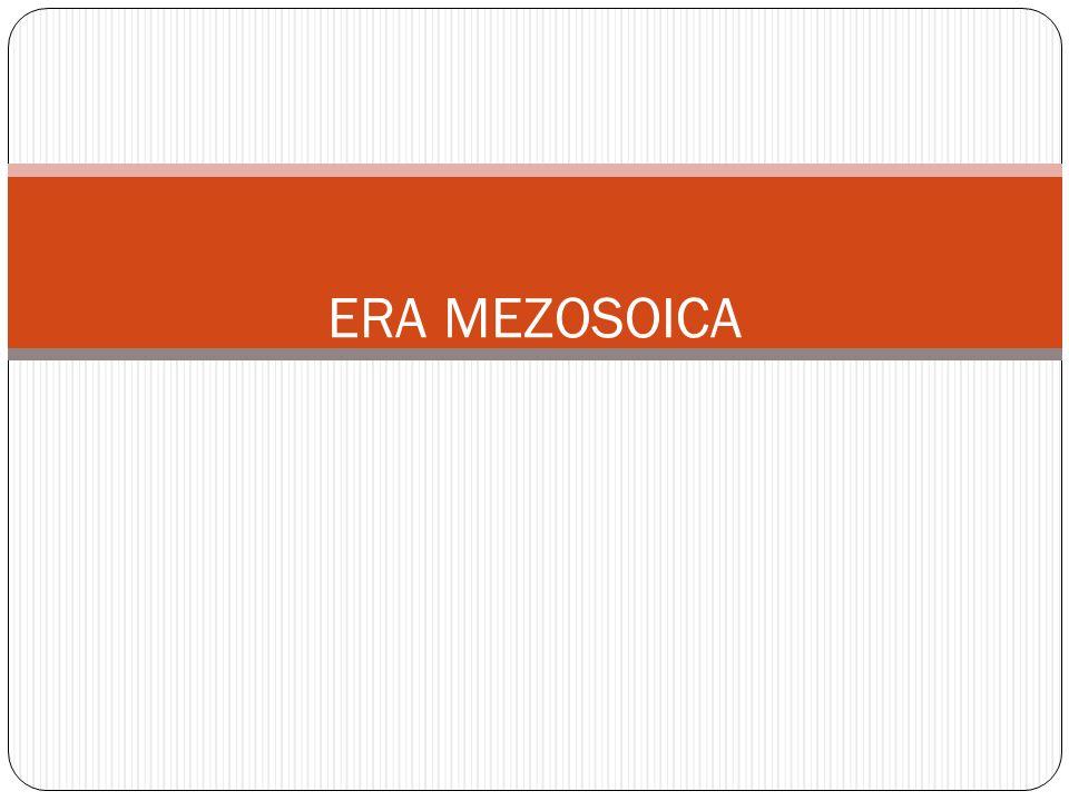 ERA MEZOSOICA