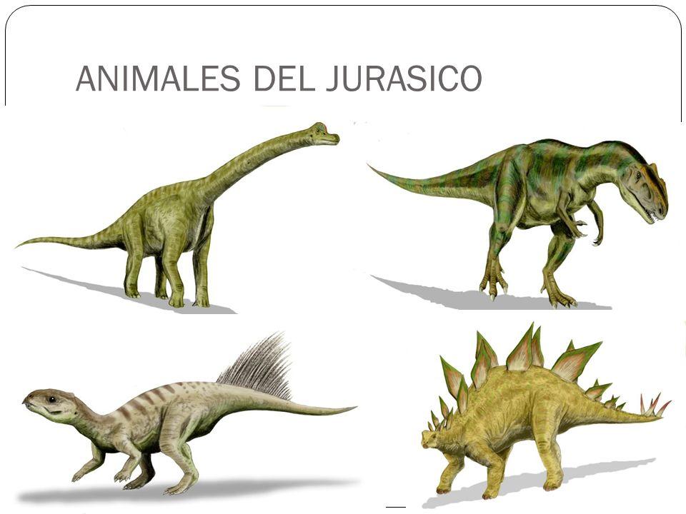ANIMALES DEL JURASICO