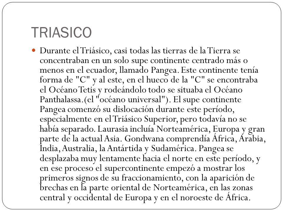 TRIASICO Durante el Triásico, casi todas las tierras de la Tierra se concentraban en un solo supe continente centrado más o menos en el ecuador, llama