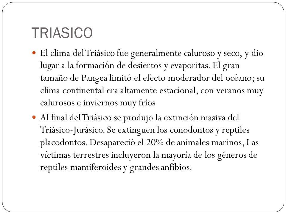 TRIASICO El clima del Triásico fue generalmente caluroso y seco, y dio lugar a la formación de desiertos y evaporitas. El gran tamaño de Pangea limitó
