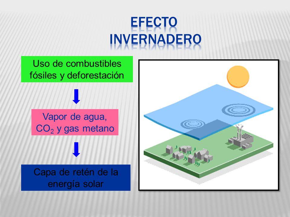 Vapor de agua, CO 2 y gas metano Capa de retén de la energía solar Uso de combustibles fósiles y deforestación