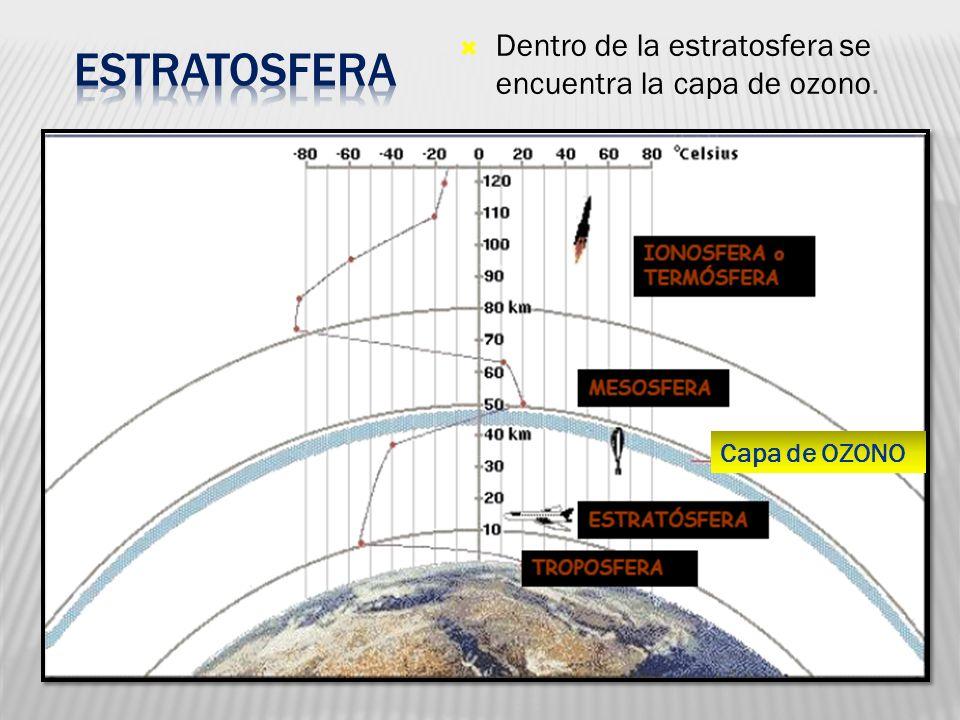 Capa de OZONO Dentro de la estratosfera se encuentra la capa de ozono.
