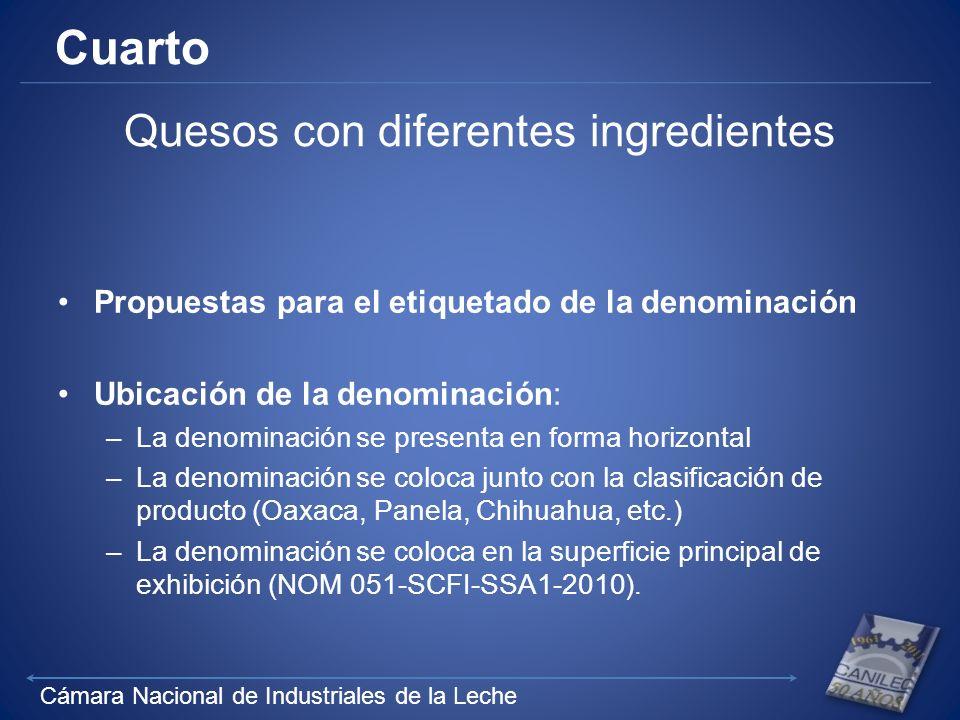 Cámara Nacional de Industriales de la Leche Cuarto Quesos con diferentes ingredientes Propuestas para el etiquetado de la denominación Ubicación de la
