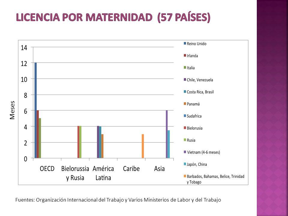 Fuentes: Organización Internacional del Trabajo y Varios Ministerios de Labor y del Trabajo Meses