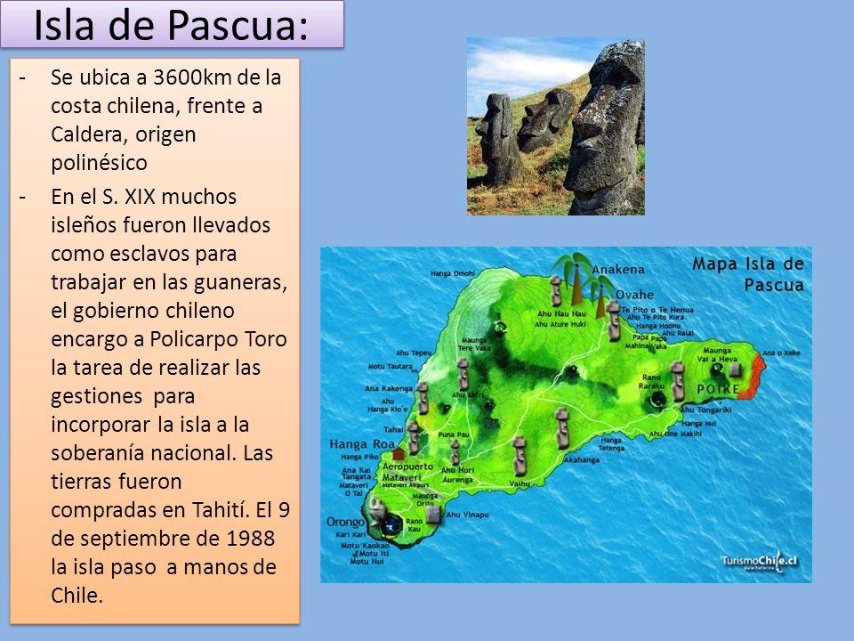 Isla de Pascua: -Se ubica a 3600km de la costa chilena, frente a Caldera, origen polinésico -En el S. XIX muchos isleños fueron llevados como esclavos
