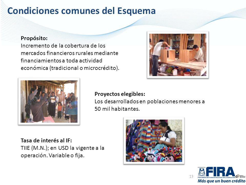 Condiciones comunes del Esquema 13 Propósito: Incremento de la cobertura de los mercados financieros rurales mediante financiamientos a toda actividad