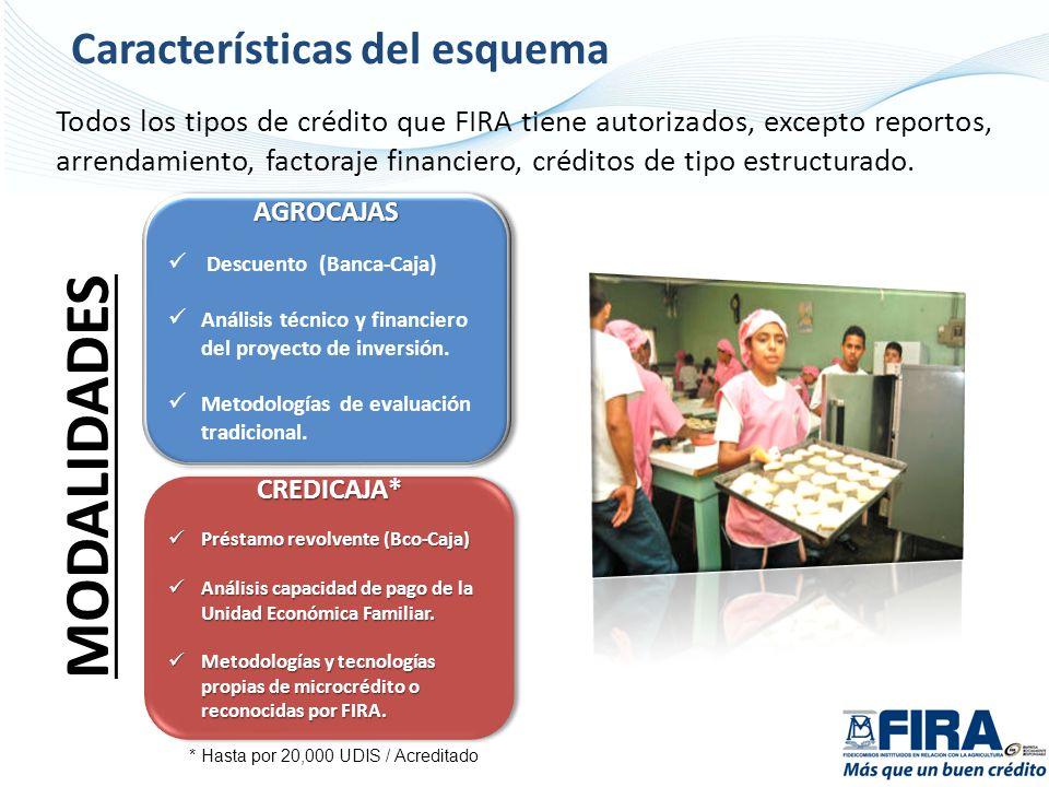 Todos los tipos de crédito que FIRA tiene autorizados, excepto reportos, arrendamiento, factoraje financiero, créditos de tipo estructurado. AGROCAJAS