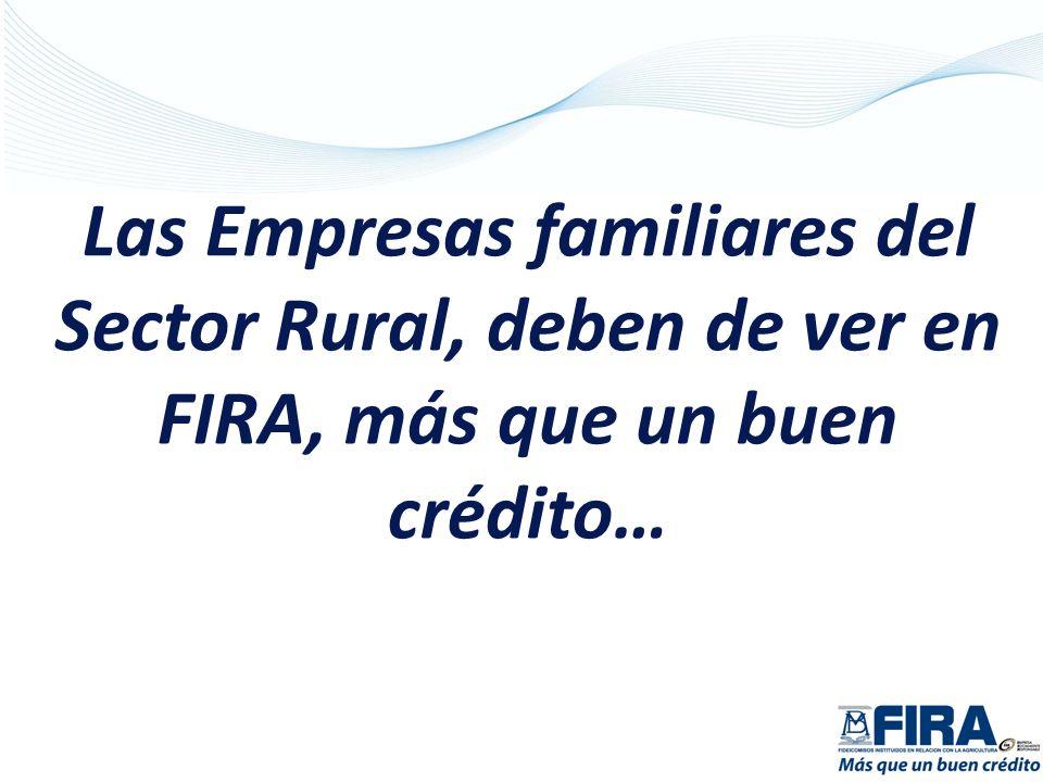Las Empresas familiares del Sector Rural, deben de ver en FIRA, más que un buen crédito…