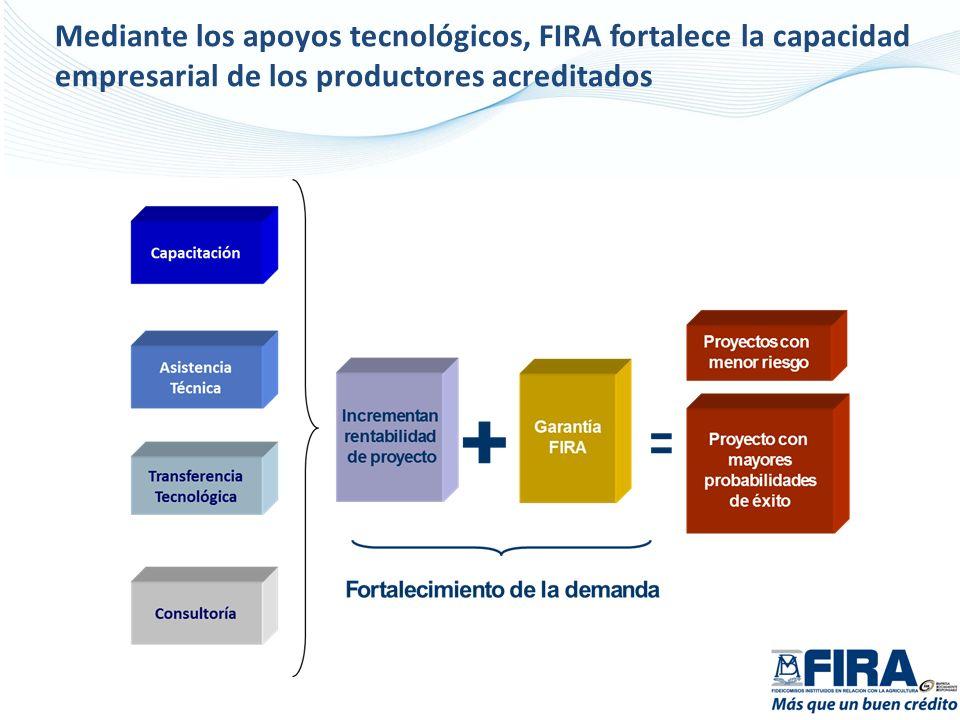 Mediante los apoyos tecnológicos, FIRA fortalece la capacidad empresarial de los productores acreditados